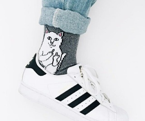 adidas, cat, and socks image