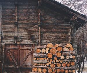 autumn, wood, and woods image
