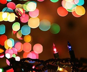 christmas, lights, and wintertime image