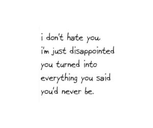 quotes, disappointed, and hate image