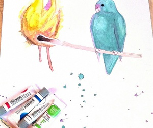 bird, colour, and fire image