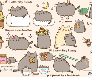 pusheen and cat image