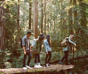 forest, friendship, and nature image