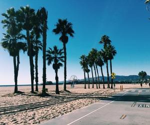 beach, blue, and palmtree image