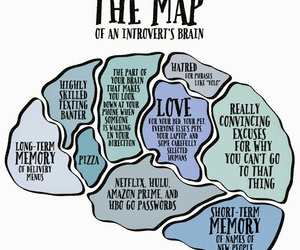 brain, diagram, and funny image