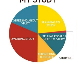study, funny, and school image