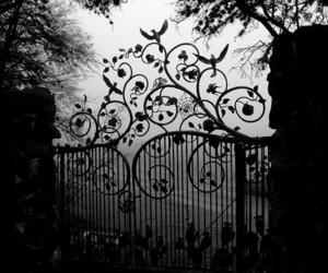 black and white, gate, and dark image