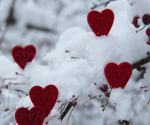 snow and hearts image