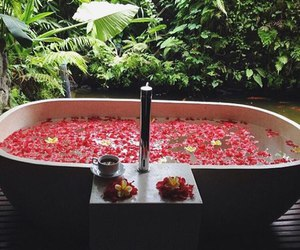 flowers, bath, and nature image
