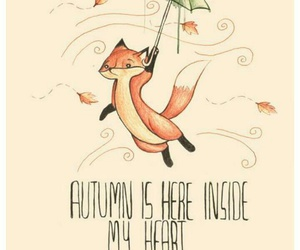 autumn, fox, and fall image