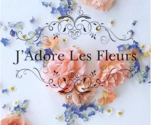 flowers, tumblr, and typography image