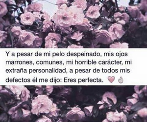 perfect, love, and frases image