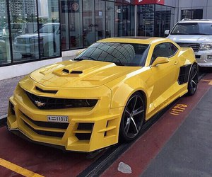 bumblebee on steroids image