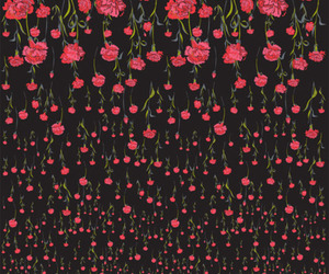 black, red, and floral image