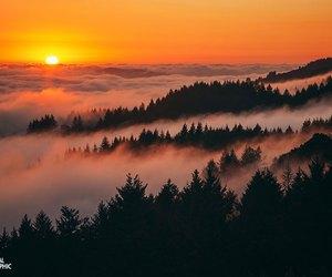 landscape, silhouette, and sunrise image