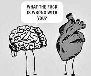 brain, heart, and love image