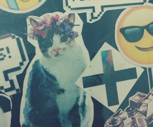 cat, grunge, and hipster image