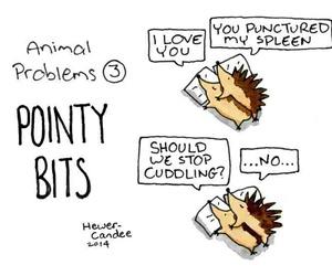 cuddling, hedgehogs, and cute image