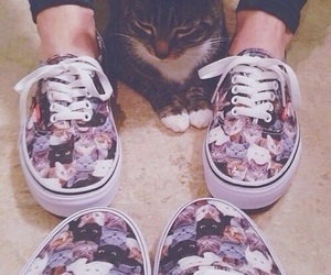 cat, vans, and fashion image