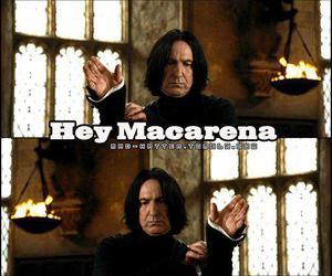 harry potter, snape, and macarena image