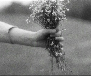 flowers, black and white, and hand image