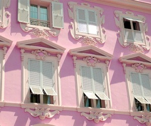 'pink' and 'photography' image