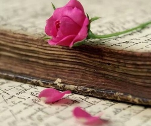 flowers, book, and rose image