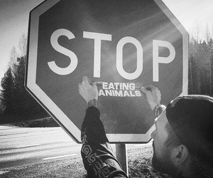 animals, stop, and vegetarian image