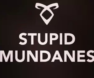 mundanes, shadowhunters, and the mortal instruments image