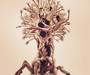 trees, beautiful, and danse image