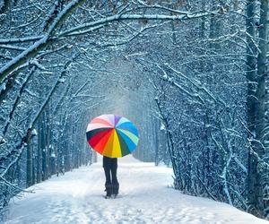 christmas, color, and snow image