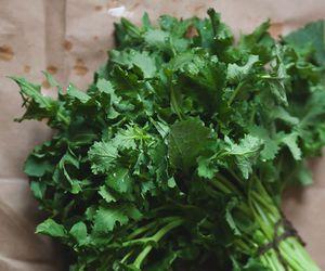 Broccoli Rabe & Egg Pizza » The Tart Tart