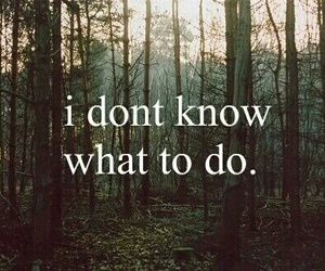 quotes, text, and forest image