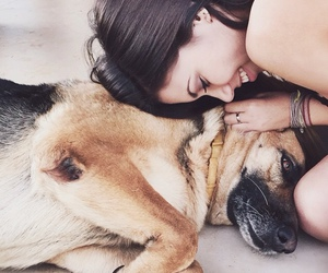 <3, dog, and haha image