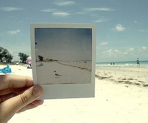 beach, photography, and photo image