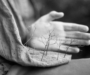 hand, tree, and nature image