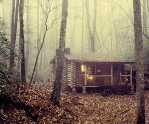 forest, house, and woods image