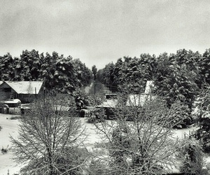 show and winter image