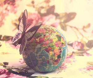 butterfly, flower, and globe image