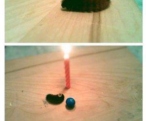 caterpillar, cute, and birthday image
