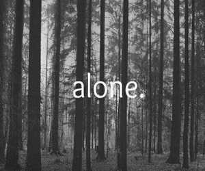 alone, grunge, and indie image