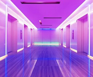 purple, pink, and neon image