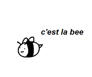 bee, french, and funny image