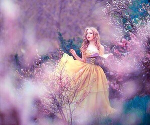 princess, book, and fantasy image