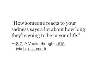 quotes, sadness, and someone image