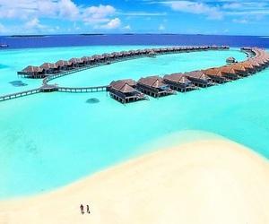 beautiful, paradise, and summer image