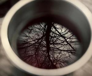tree, tea, and coffee image