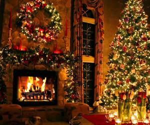 christmas and winter image