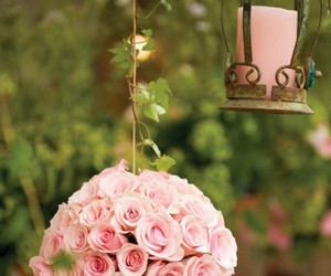 rose, pink, and candle image
