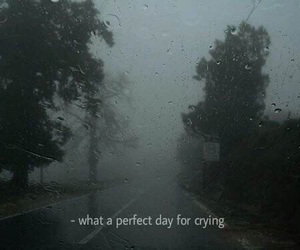 sad, quotes, and crying image